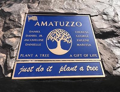 Custom Bronze Tree of Life Plaque With Logo